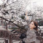 147cmコーデ♡<Br>低身長に優しいロングワンピース♡<Br>桜が綺麗に咲いてる〜!